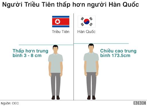 nhung-loai-trai-cay-giup-tang-chieu-cao-2